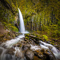 Columbia Gorge, Spring