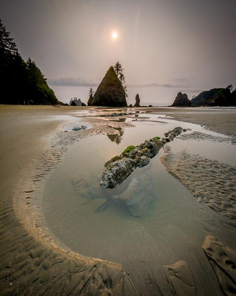 Shi Shi Beach, Olympic Peninsula